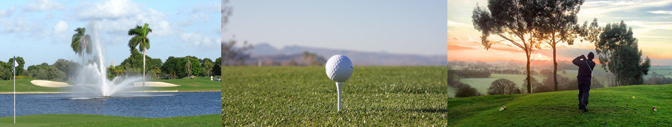 GOLF ONLINE GUIDE .com